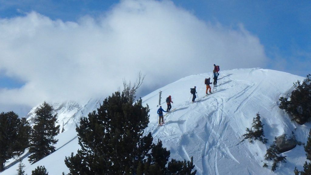 Group of skiers out in the backcountry