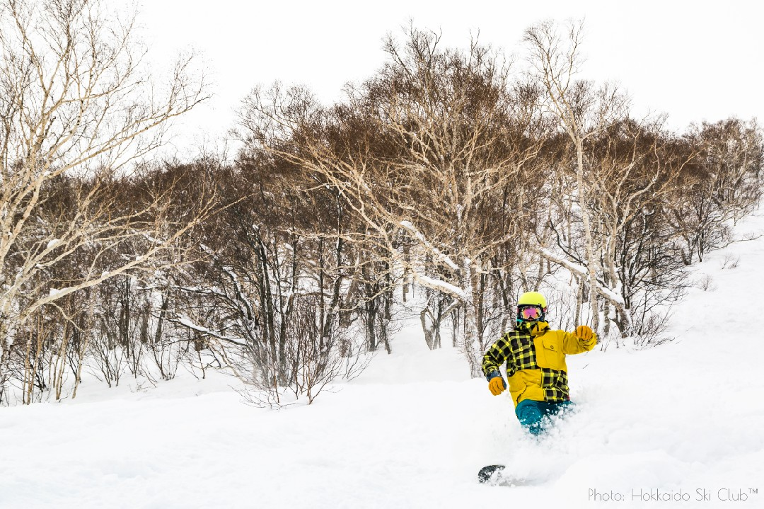 Guest enjoying the powder in Niseko