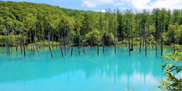 Shirogane Blue Lake in Biei, Hokkaido (Photo: Hokkaido Ski Club)